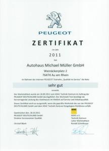 werkstatttest-peugeot-2011-gross